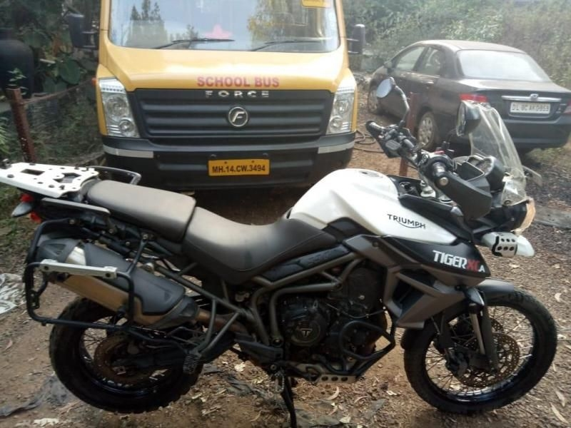 Triumph Tiger Super Bike For Sale In Pune Id 1416280437 Droom