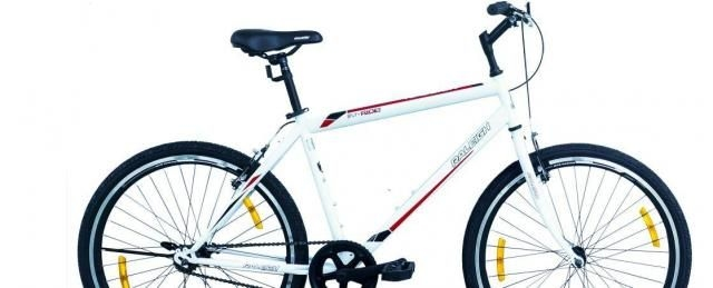Raleigh MY RIDE 21 S/S