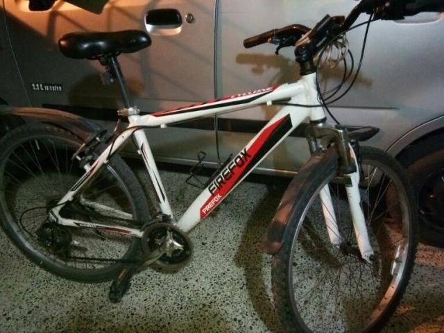 Schnell Cyclone 26 Inches 2014